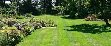 Well maintained garden - Oakland Group